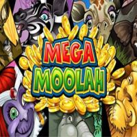 mega moolah polder casino