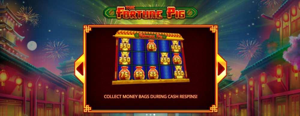 Fortune Pig money bag bonus